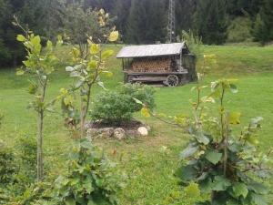 Concorso_Body_Painting_nelle_Dolomiti_2